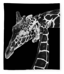 Mother And Baby Giraffe Fleece Blanket