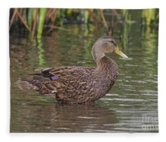 Mottled Duck Drake Fleece Blanket