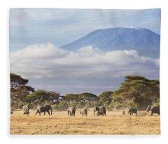 Mount Kilimanjaro Amboseli  Fleece Blanket
