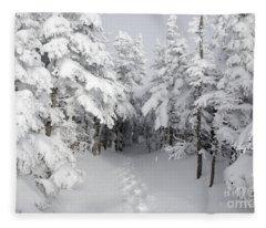 Mount Osceola Trail - White Mountains New Hampshire Fleece Blanket