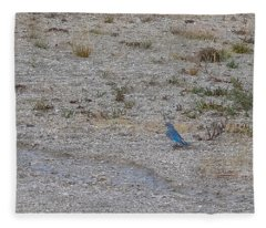 Mountain Bluebird  Fleece Blanket