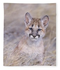Mountain Lion Cub In Dry Grass Fleece Blanket