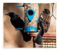 Mr. And Mrs. Red Winged Blackbird Fleece Blanket