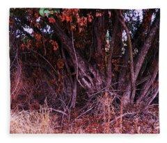 Mulberry In Fall Fleece Blanket