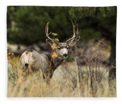 Mule Deer I Fleece Blanket