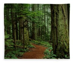 Mystical Path Fleece Blanket