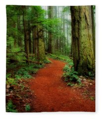 Mystical Trail Fleece Blanket