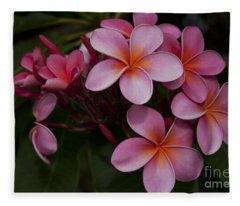 Na Lei Pua Melia O Wailua - Pink Tropical Plumeria Hawaii Fleece Blanket