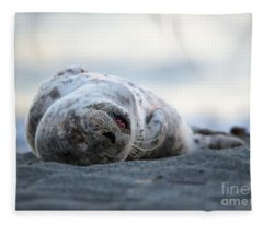 Seal Pup Nap Fleece Blanket