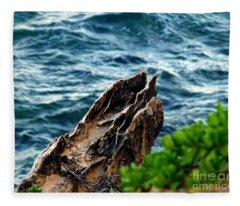 Natures Sculptures Vii Fleece Blanket