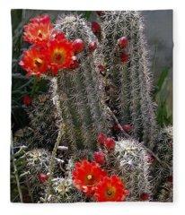 New Mexico Cactus Fleece Blanket