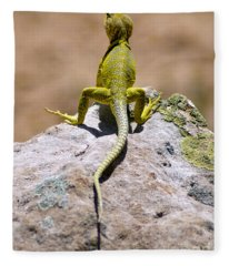 New Photographic Art Print For Sale Lizard Back Ghost Ranch New Mexico Fleece Blanket