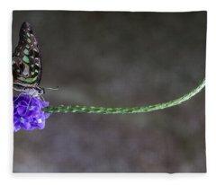 Butterfly - Tailed Jay II Fleece Blanket