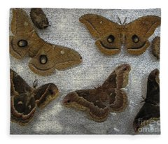 North American Large Moth Collection Fleece Blanket
