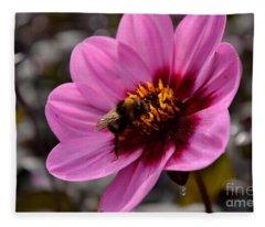 Nosy Bumble Bee Fleece Blanket