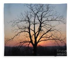 November Walnut Tree At Sunrise Fleece Blanket
