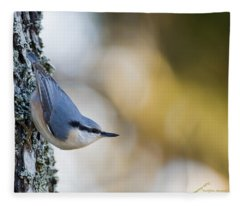 Nuthatch In The Classical Position Fleece Blanket