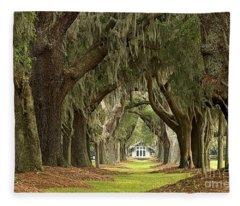 Oaks Of The Golden Isles Fleece Blanket