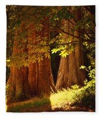 Old Forest Fleece Blanket