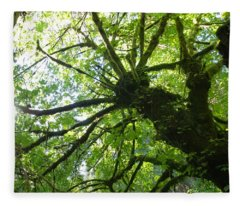 Old Growth Tree In Forest Fleece Blanket