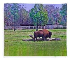 One Bison Family Fleece Blanket