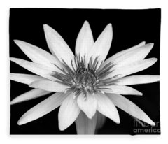 One Black And White Water Lily Fleece Blanket