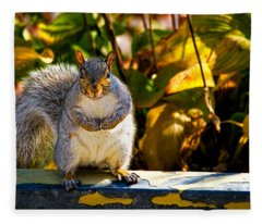 One Gray Squirrel Fleece Blanket