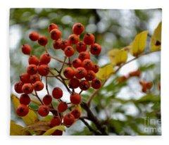 Orange Autumn Berries Fleece Blanket
