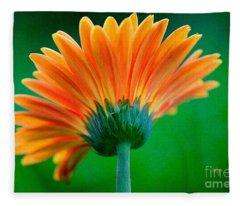 Orange Blast Fleece Blanket