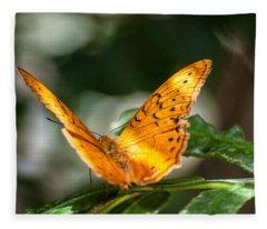 Orange Butterfly Fleece Blanket