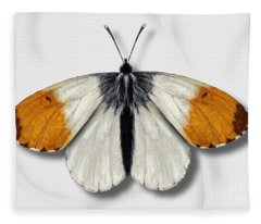 Orange Tip Butterfly - Anthocharis Cardamines Naturalistic Painting - Nettersheim Eifel Fleece Blanket