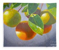 Oranges Fleece Blanket