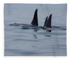 Orca Family Fleece Blanket