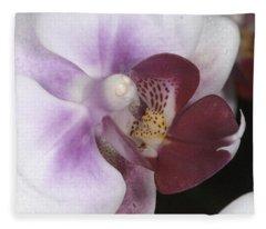 Orchid 503 Fleece Blanket