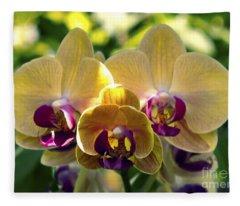 Orchid Study Viii Fleece Blanket