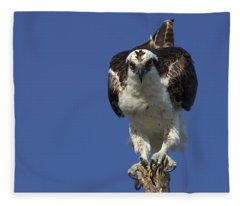 Osprey Photo Fleece Blanket
