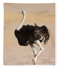 Arid Fleece Blankets