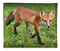 Out For A Walk Fleece Blanket