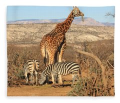 Out Of Africa Fleece Blanket