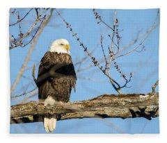 Overlooking Freedom Fleece Blanket