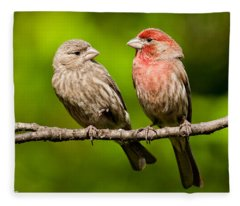 Pair Of House Finches In A Tree Fleece Blanket