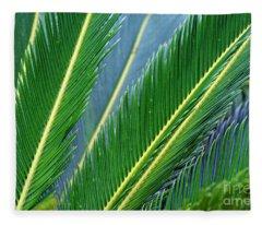 Palm Cycas Fronds Fleece Blanket