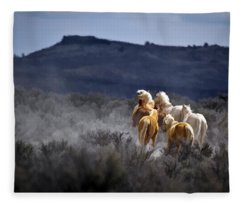Palomino Buttes Band Fleece Blanket
