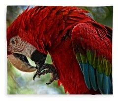 Parrot Preen Hdr Fleece Blanket