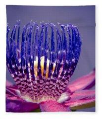 Passiflora Alata - Ruby Star - Ouvaca - Fragrant Granadilla -  Winged-stem Passion Flower Fleece Blanket