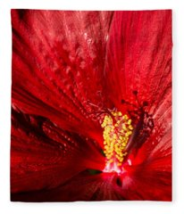 Passionate Ruby Red Silk Fleece Blanket