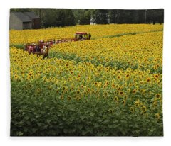 Path Through The Sunflowers Fleece Blanket