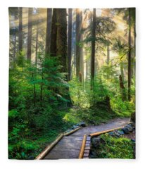 Pathway Into The Light Fleece Blanket