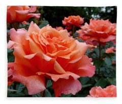 Peach Roses Fleece Blanket