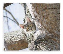 Peaking Cat Fleece Blanket